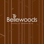 Download Bellewoods Floorplans At SG Floorplans