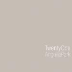 Download 21 Angullia Park Floorplans At SG Floorplans